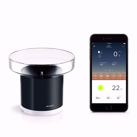 Picture of Rain Gauge by Netatmo*